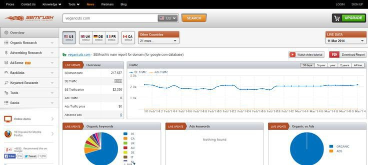 Smrush Analytics Reports