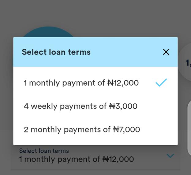 Branch Loan repayment